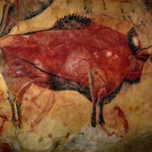 bison_altamira